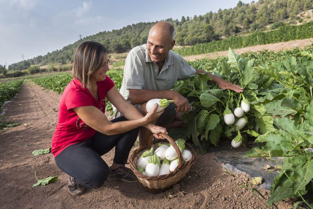 El Consell Comarcal impulsa l'Associació de Productors i Elaboradors Agroalimentaris del Bages