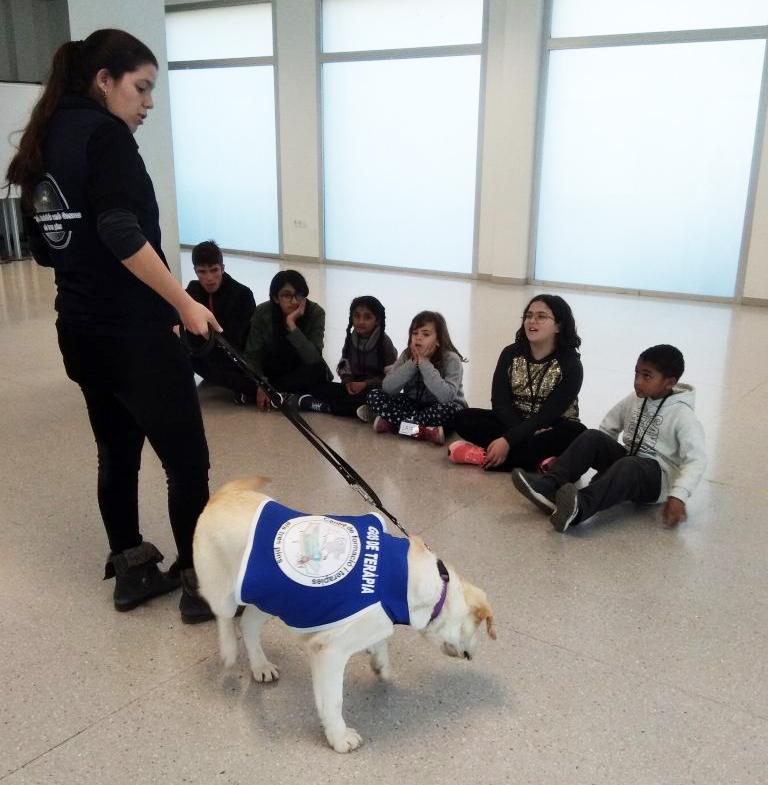 Sessió de caninoteràpia durant el Libertempo