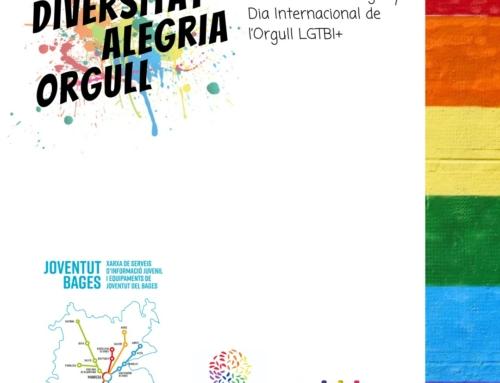 El Consell Comarcal del Bages proposarà commemorar el Dia Internacional de l'Orgull LGTBI+ amb una pintada col·lectiva de murals