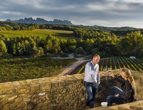 Bages Turisme i la DO llancen la Ruta del Vi de la DO Pla de Bages per convertir la comarca en un referent de l'enoturisme cultural