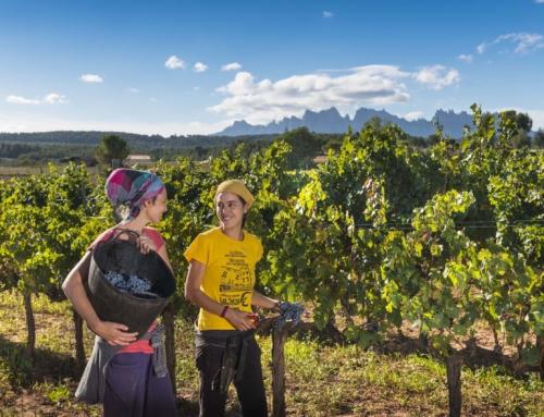 Bages Turisme prepara una jornada de tancament d'any amb tot el sector turístic del Bages