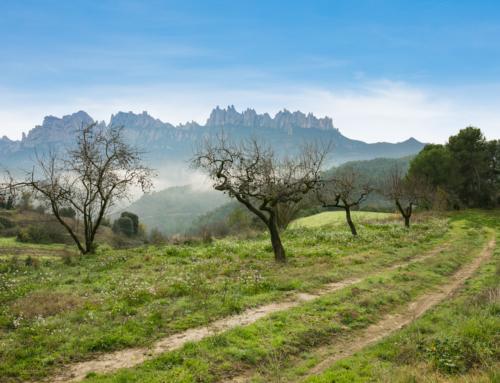 El Geoparc de la Catalunya Central comença a aplicar el seu pla de màrqueting