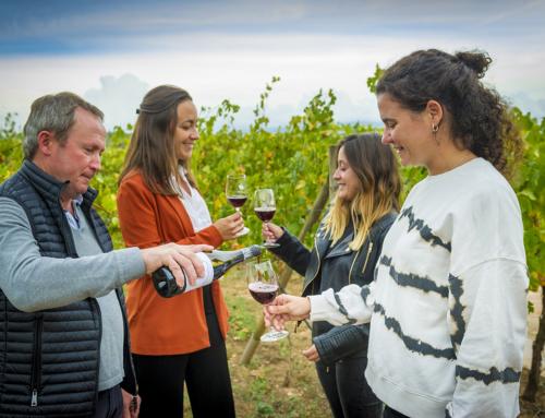 El Consell Regulador de la DO Pla de Bages i Bages Turisme presentaran la nova Ruta del vi de la DO Pla de Bages a la sessió dels Fòrums territorials d'Enoturisme